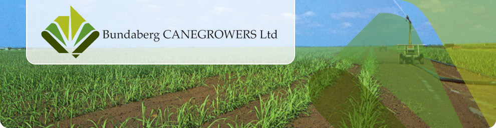Bundaberg CANEGROWERS